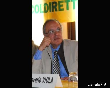coldiretti_comp