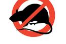 Intervento di derattizzazione sul territorio comunale: Martedì 6 e Mercoledì 7 Ottobre 2015