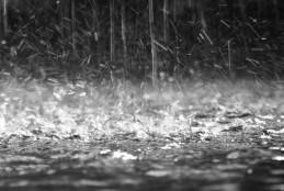 """Rinviato l'evento """"Fondi – Città di Gusto e della Via Francigena"""" in ragione delle avverse condizioni meteo"""
