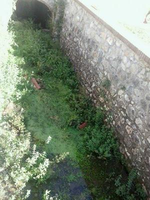 ++vandali all'ex idrovora monte san biagio (3)