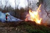 Allerta incendi boschivi, emessa ordinanza riguardante il periodo di massimo rischio