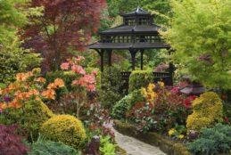 Giardini fioriti: come manutenerli in estate?