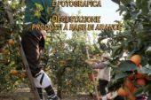"""Seconda edizione della """"Rievocazione della raccolta delle arance"""": Domenica 30 Aprile 2017"""