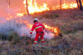 Delibera di approvazione cartografia aggiornamento aree percorse dal fuoco e individuazione aree destinate dal P.G.A.F. a Pascolo/Pascolo Arborato, con esclusione di quelle percorse dal fuoco su cui gravano i vincoli imposti dalla Legge