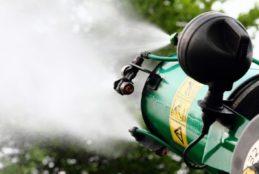 Fondi, disinfestazione da insetti alati, articolata in tre diverse giornate: Lunedì 15, Martedì 16, Mercoledì 17 Luglio